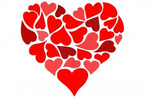 Coups de coeur adulte
